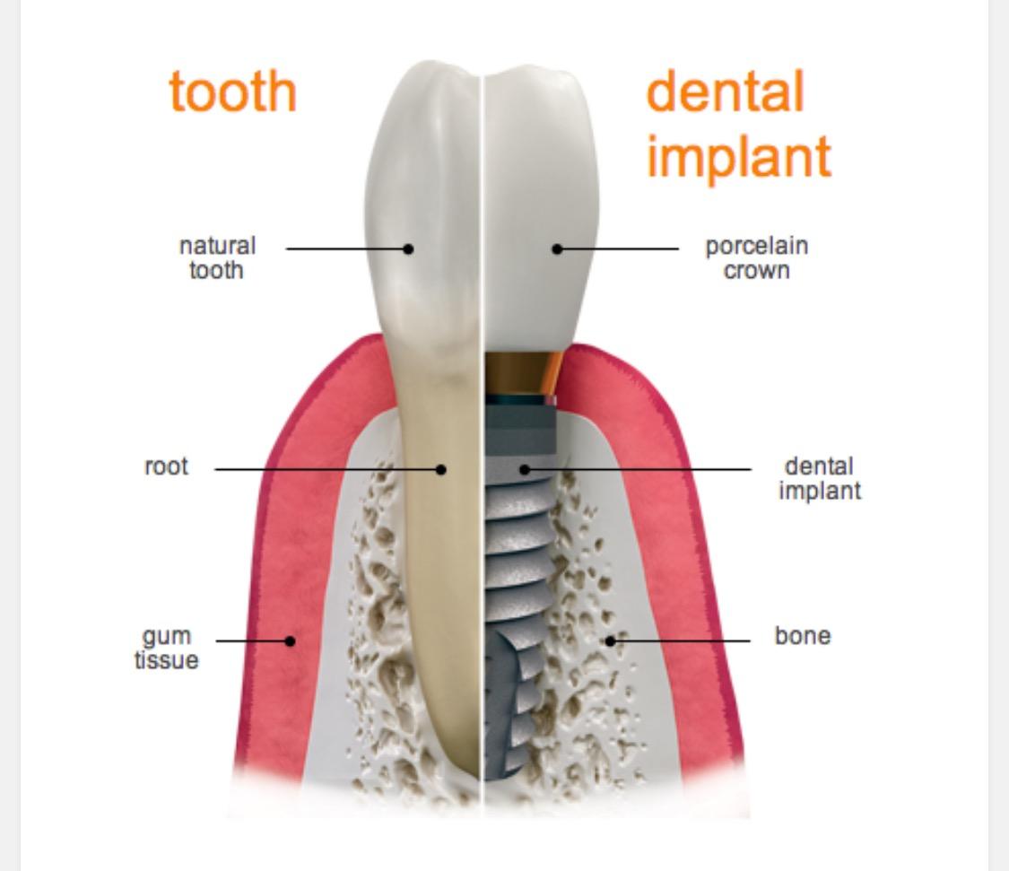 Dental Care South